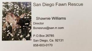 San Diego Fawn Rescue
